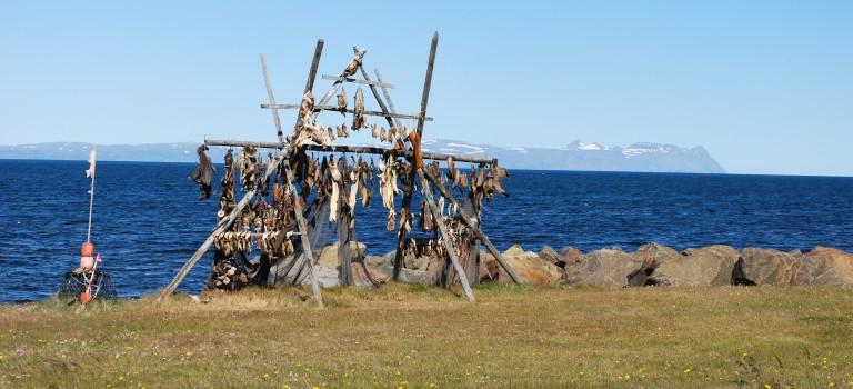 Suite du périple: le Nord de l'Islande