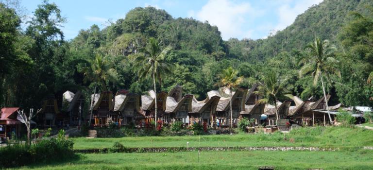 Immersion dans le pays Toraja