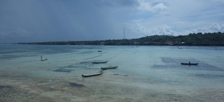 Nuances de bleu à Nusa Lembonggan